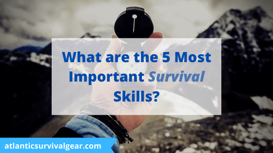 What are the 5 most important survival skills