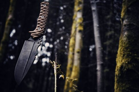 What can you do with a survival knife, knife in a forest