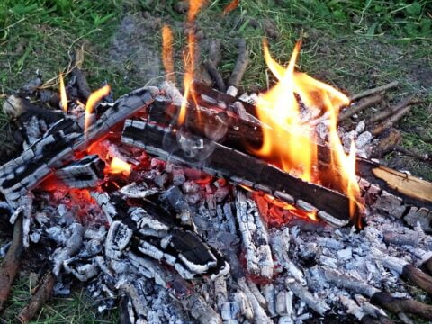 Why are money important in a survival kit, fire