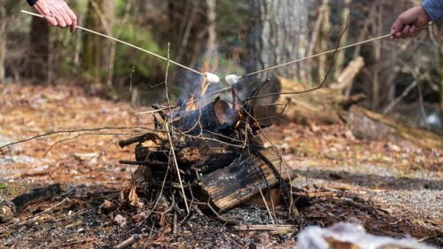Best Way to Prepare Food in a Survival Situation, campfire and marshmallows
