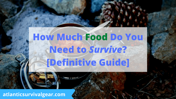 How much food do you need to survival, thumbnail